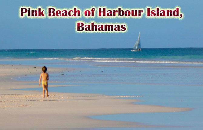 Pink Beach of Harbor Island
