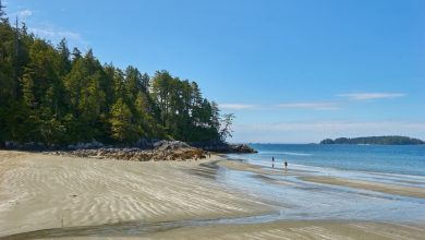 Photo of The Top 8 Beach Destinations in Canada